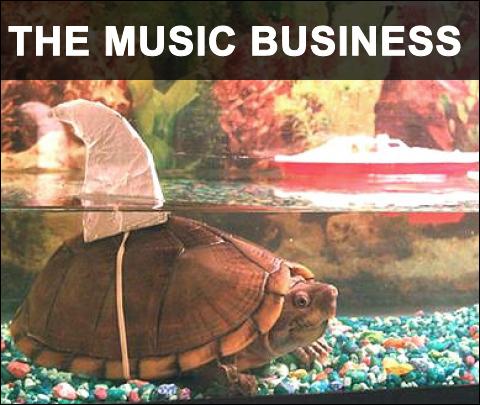 musicbiz